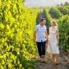 A romantic stroll through the vines