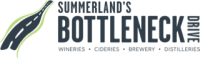 bottleneck drive logo