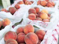 Penticton Farmers Market