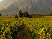 Similkameen Wineries