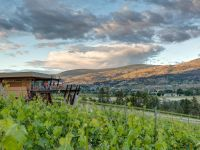 Play Estate Winery
