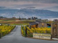 Little Engine Wines