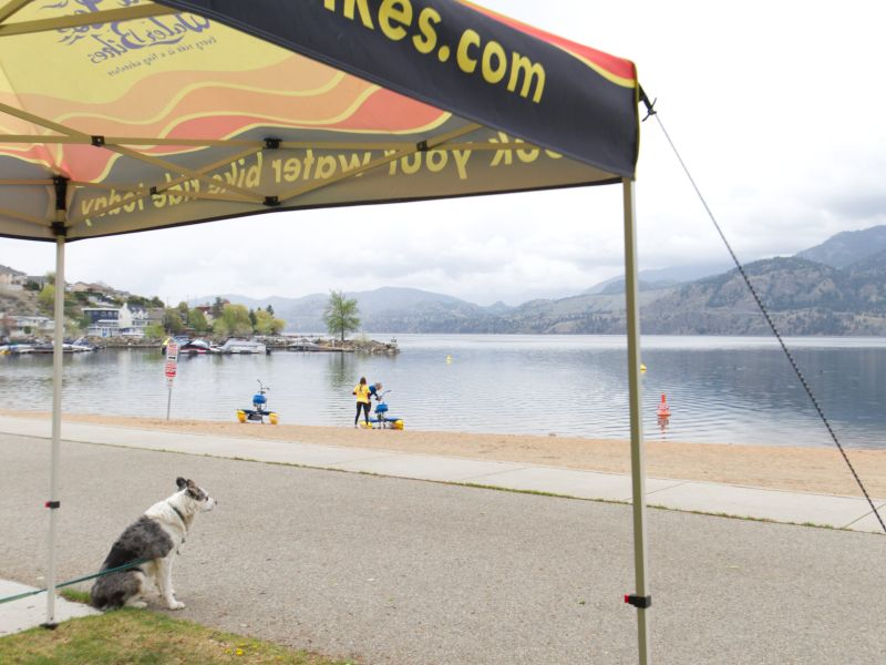sea legs water bikes tent and dog overlooking skaha